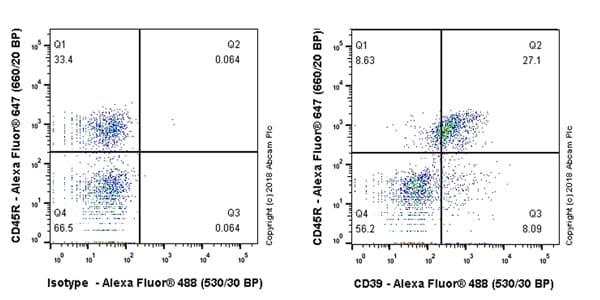 Flow Cytometry - Anti-CD39 antibody [EPR22507-48] (ab227840)