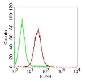 Flow Cytometry - Anti-IKK alpha antibody [ABM10G9] (ab227852)