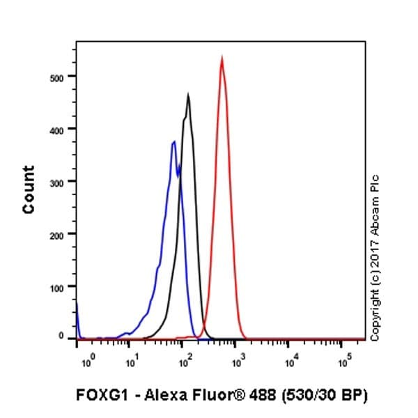 Flow Cytometry - Anti-FOXG1 antibody [EPR18987] - BSA and Azide free (ab227888)