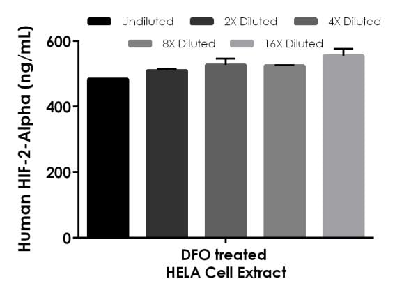 Interpolated concentrations of native HIF-2-alpha in DFO treated Human HeL1 cell extract, sample based on a 250 µg/mL extract load
