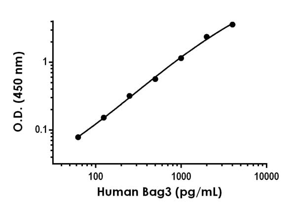 Example of humanBag3 standard curve in 1X Cell Extraction Buffer PTR