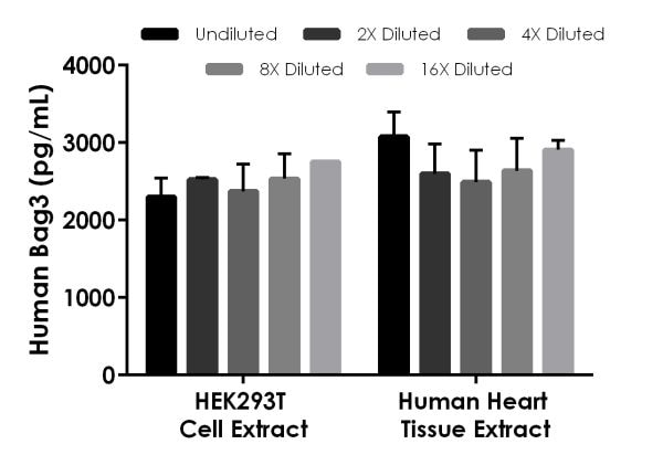 Interpolated concentrations of native Bag3 in HEK293T cell extract based on a 100 µg/mL extract load and human heart tissue extract based on a 150 µg/mL extract load