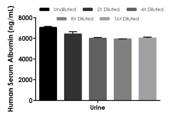 Interpolated concentrations of native Albumin in human urine samples
