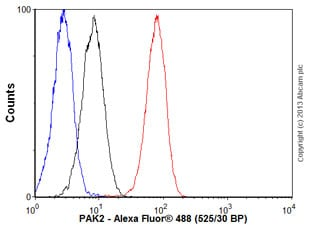 Flow Cytometry - Anti-PAK2 antibody [EP796Y] - BSA and Azide free (ab227990)