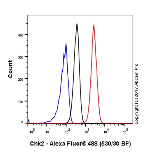 Flow Cytometry - Anti-Chk2 antibody [EPR4325] - BSA and Azide free (ab227998)