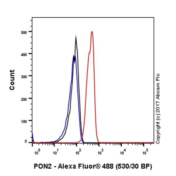 Flow Cytometry - Anti-PON2 antibody [EPR18547-2] - BSA and Azide free (ab228134)