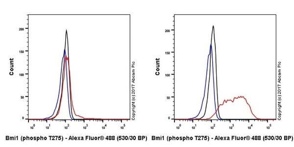 Flow Cytometry - Anti-Bmi1 (phospho T275) antibody [EPR19848] - BSA and Azide free (ab228458)