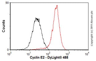 Flow Cytometry - Anti-Cyclin E2 antibody [E142] - BSA and Azide free (ab228478)