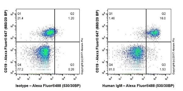 Flow Cytometry - Anti-Human IgM antibody [EPR20731] - BSA and Azide free (ab228524)