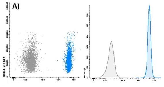 Flow analysis of exosomes bound to immunobeads.