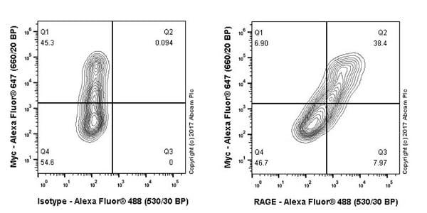 Flow Cytometry - Anti-RAGE antibody [EPR21171] - BSA and Azide free (ab228861)