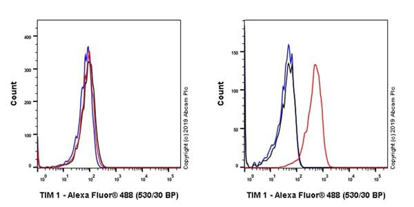 Flow Cytometry - Anti-TIM 1 antibody [EPR22650-136] (ab228973)