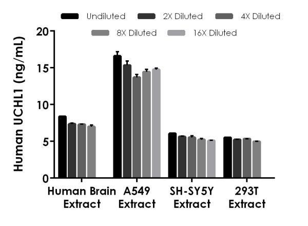 Interpolated concentrations of native UCHL1 in human brain extract, A549 cell extract, SH-SY5Y cell extract, and 293T cell extract samples.