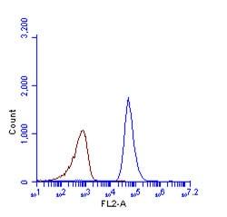 Flow Cytometry - Anti-LC3B antibody - N-terminal (ab229327)