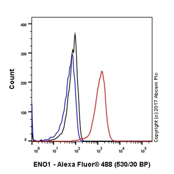 Flow Cytometry - Anti-ENO1 antibody [EPR19758] - BSA and Azide free (ab229378)