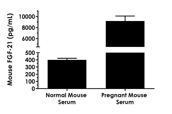 Interpolated concentrations of FGF-21 in normal female CD-1 mouse serum and pregnant female CD-1 mouse serum at day 18 of gestation