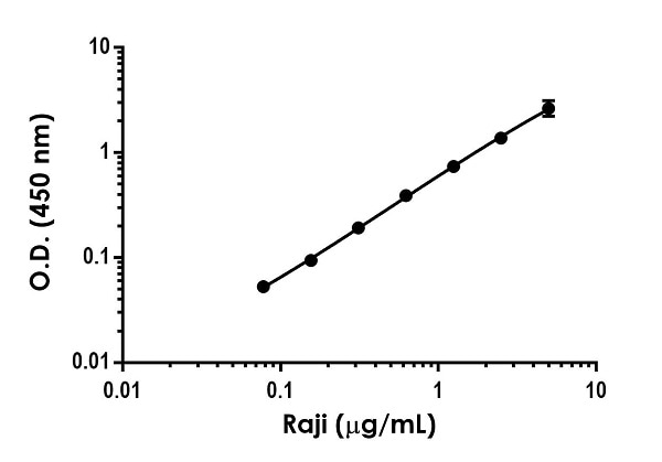 Example of ICAM1 dynamic range in Raji cell extracts.