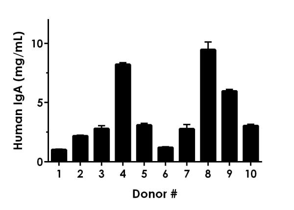 IgA levels in individual healthy donors.