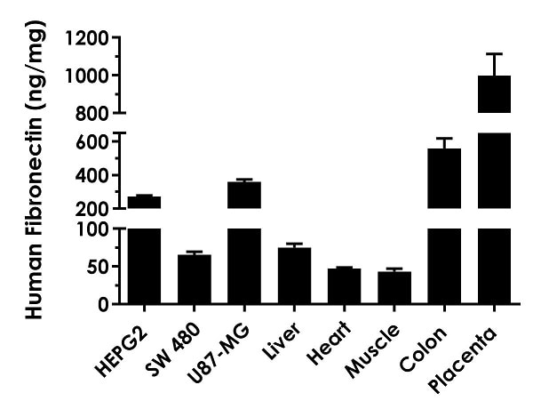 Interpolated concentrations of native Fibronectin in human cell and tissue extract samples.