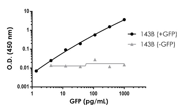 Titration of GFP spiked 143B cell lysate within the working range of the assay.
