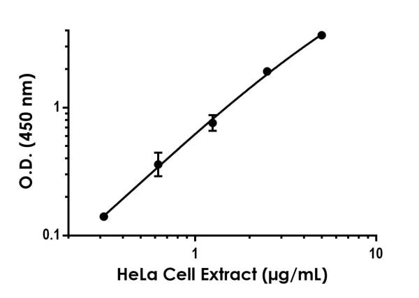 Titration of HeLa cell extract within the working range of the assay.