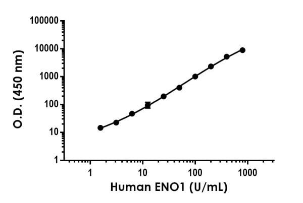 Example of human ENO1 (Alpha-Enolase) standard curve in 1X Cell Extraction Buffer PTR.