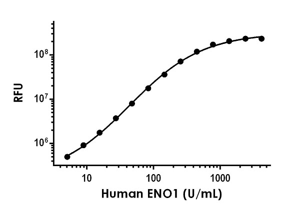 Example of human ENO1 standard curve in 1X Cell Extraction Buffer PTR.