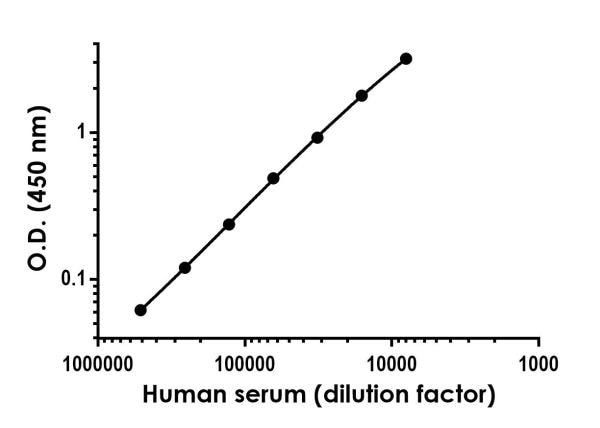 Titration of pooled human serum within the working range of the assay