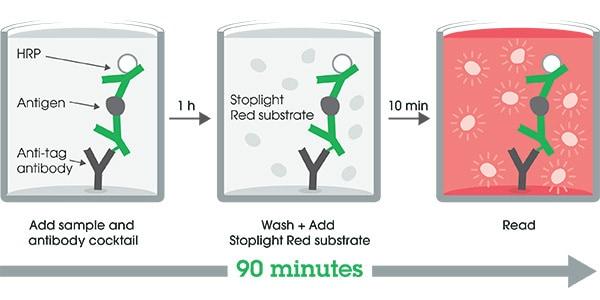 Other - Human Apolipoprotein AII ELISA Kit, Fluorescent (ab229423)