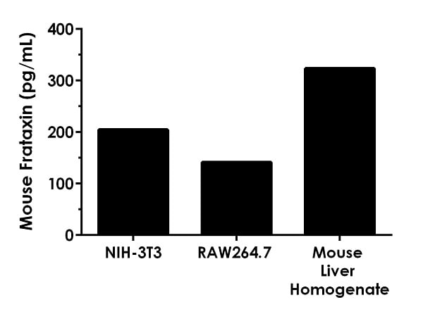 Quantitation of mouse Frataxin protein expression in different cell and tissue extract