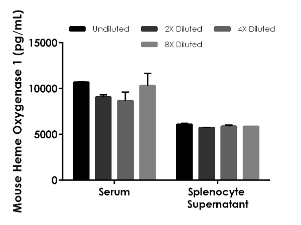 Interpolated concentrations of Heme Oxygenase 1 in mouse serum, and splenocyte supernatant.