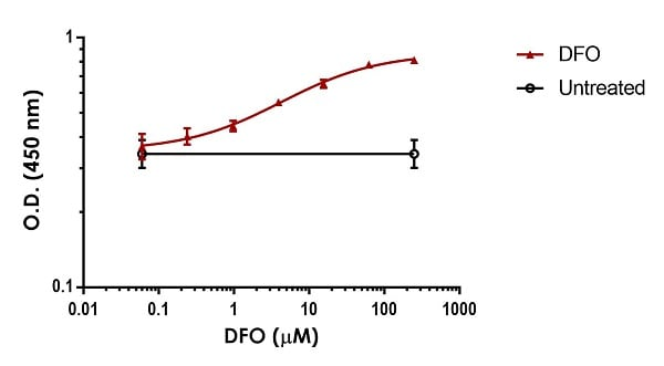 Dose-dependent induction of HIF1 alpha in HeLa cells by deferoxamine (DFO).