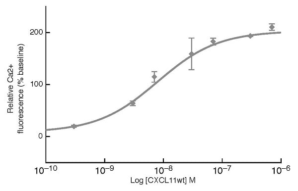 Functional Studies - Recombinant human CXCL11 protein (ab229837)