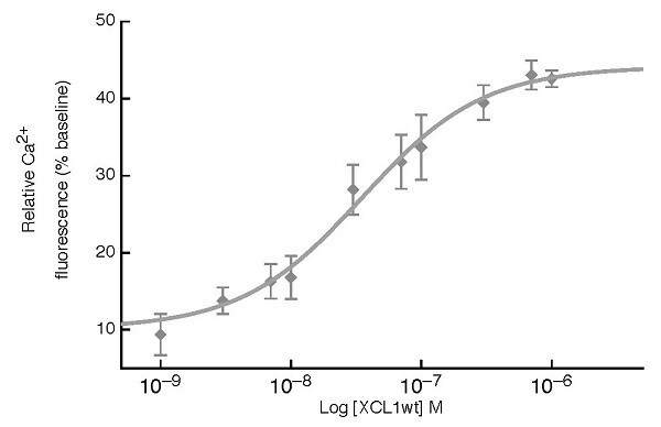 Functional Studies - Recombinant human XCL1 protein (ab229838)