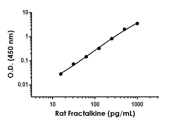 Example of rat Fractalkine standard curve.