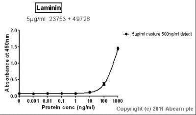 Sandwich ELISA - Anti-Laminin antibody (ab23753)