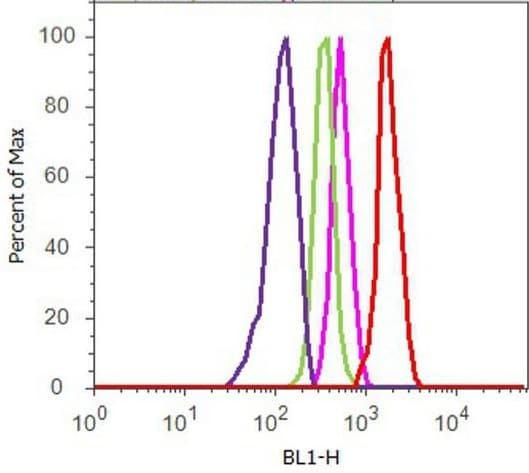 Flow Cytometry - Anti-AMPK alpha 1 (phospho T183) + AMPK alpha 2 (phospho T172) antibody (ab23875)