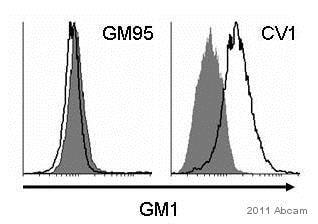 Flow Cytometry - Anti-Ganglioside GM1 antibody (ab23943)