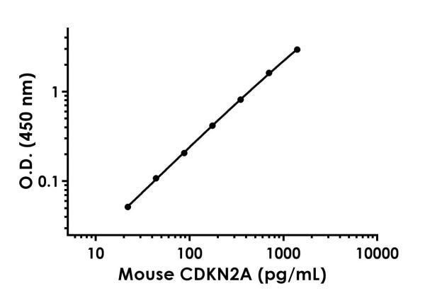 Example of Mouse CDKN2A standard curve in 1X Cell Extraction Buffer PTR.