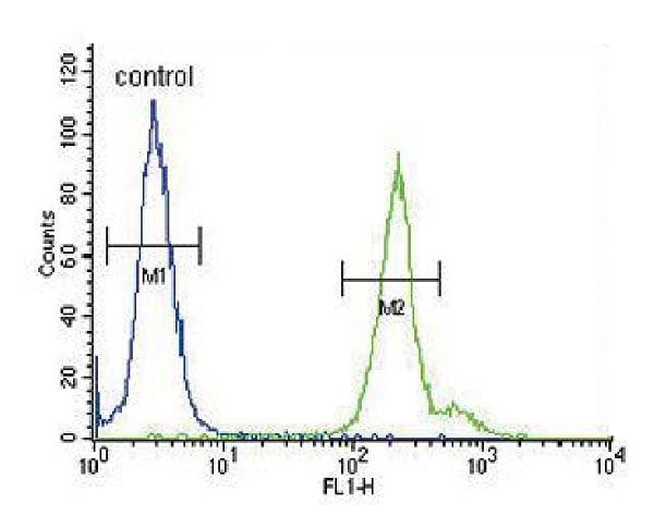 Flow Cytometry - Anti-Neuronal membrane glycoprotein M6-a antibody - C-terminal (ab230356)