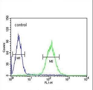 Flow Cytometry - Anti-POU5F1B antibody (ab230429)