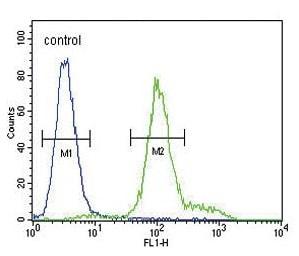 Flow Cytometry - Anti-IL-12RB2 antibody - C-terminal (ab230446)