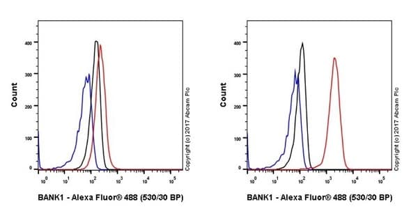 Flow Cytometry - Anti-BANK1 antibody [EPR20788] - BSA and Azide free (ab230492)