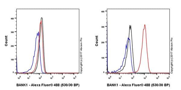 Flow Cytometry - Anti-BANK1 antibody [EPR20795] - BSA and Azide free (ab230493)