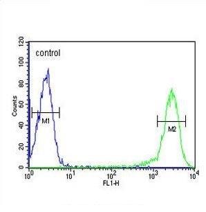 Flow Cytometry - Anti-Calcitonin receptor/CT-R antibody (ab230500)