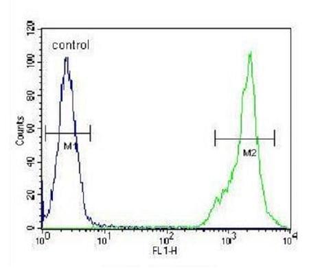 Flow Cytometry - Anti-C4BPA antibody - C-terminal (ab230525)
