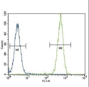 Flow Cytometry - Anti-Telomerase reverse transcriptase antibody (ab230527)
