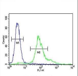 Flow Cytometry - Anti-ERO1LB antibody - C-terminal (ab230540)