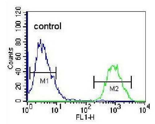 Flow Cytometry - Anti-HOPX/HOD antibody (ab230544)