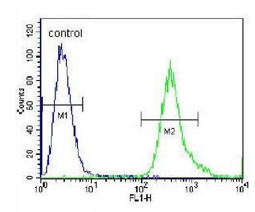 Flow Cytometry - Anti-SLC25A6 antibody (ab230545)